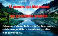 http://dc195.4shared.com/img/302814504/2500b784/12_preuves_que_mohammad_est_un.png?rnd=0.23524970075279283&sizeM=7