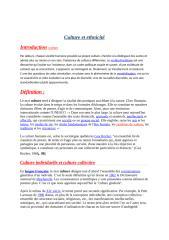 culture et ethnicite.docx